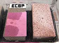 ecb_02